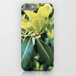 Fortune's Spindle iPhone Case