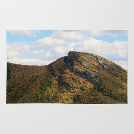 Hawks Bill * Linville Gorge * right B4 the fire Rug