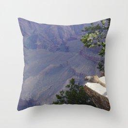 Grand Canyon Squirrel Throw Pillow