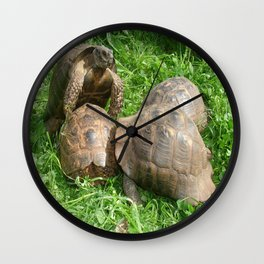 Bullied into Submission - Mating Tortoises Wall Clock