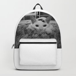 kitty ready to pounce Backpack