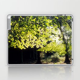 The Woods in Spring Laptop & iPad Skin