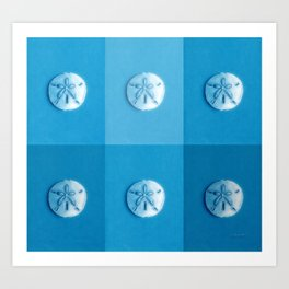Sand Dollars - multiblues! Art Print