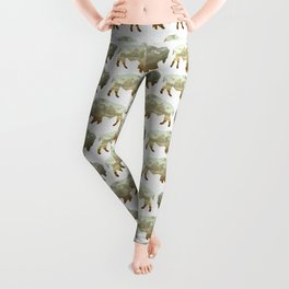 Bison and Plains Leggings