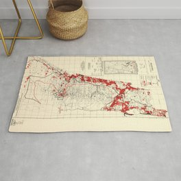 Map of Palestine Index to Villages & Settlements 1940's Rug