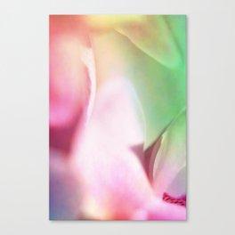 orchid petals Canvas Print
