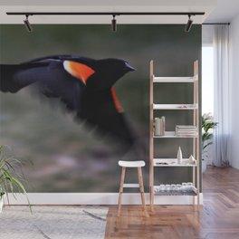 Red wing Blackbird Wall Mural