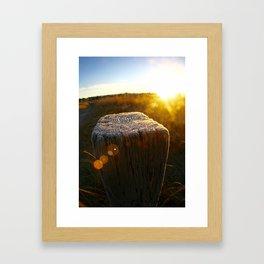 Post Frost Framed Art Print