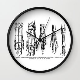 Lower Limbs of Ungulate Animals Wall Clock
