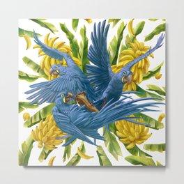 Hyacinth macaws and bananas Stravaganza. Metal Print