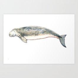Dugong Art Print