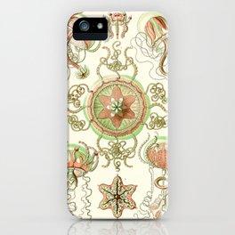 Haeckel jelly fish vintage iPhone Case