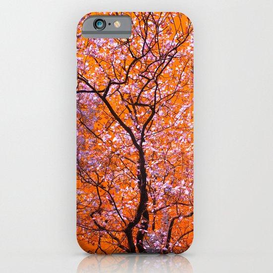 autumn tree IX iPhone & iPod Case
