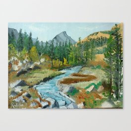 beautiful place Canvas Print