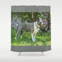 best friend Shower Curtains featuring mans best friend by Robert Raney