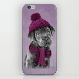 Drawing Puppy Cane Corso in hat and scarf iPhone Skin