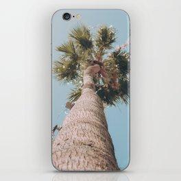 palm springs palm tree iPhone Skin