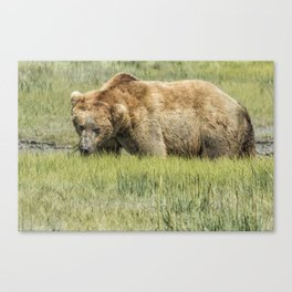 Back to the Business of Eating Canvas Print