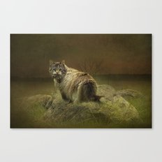 A Game of Cat and Mouse Canvas Print