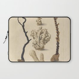 Naturalist Coral Laptop Sleeve
