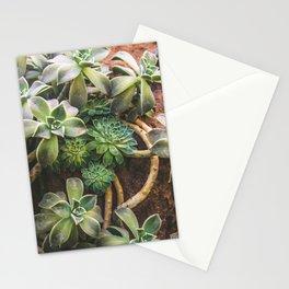 Botanical Gardens - Succulent #882 Stationery Cards