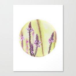 Circular Verbena Art Print Canvas Print