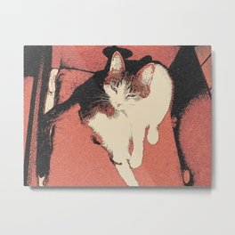 Human, can't you see I'm bathing in here? ;) My cat queen Metal Print