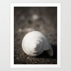 Treasures from the see #3 Art Print