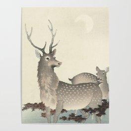 Deer by Ohara Koson Poster