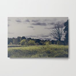The withered tree Metal Print