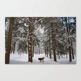 Dog exploring a snowy forest Canvas Print