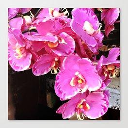 Vibrant Pink Orchids Tropical Floral Arrangement Canvas Print