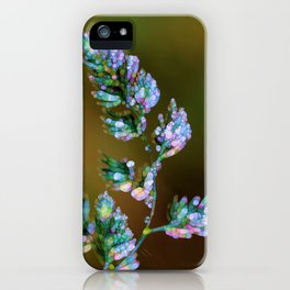 Tropical, feathers and dew iPhone Case