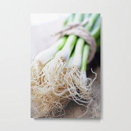 Green Onion Metal Print
