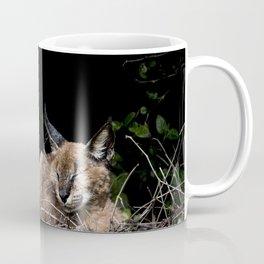 Napping Cat Coffee Mug