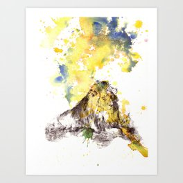 Lion in a Splash of Color Art Print