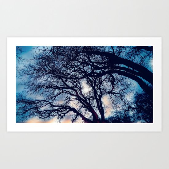 Mystic trees Art Print