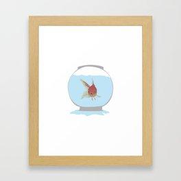 Stuck Goldfish Framed Art Print