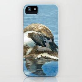Humboldt penguin (Spheniscus humboldti) iPhone Case