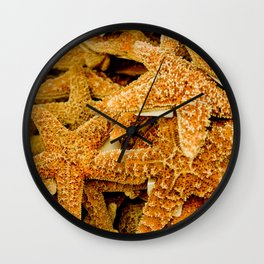 Summer Photo : Starfishes in Key West, FL Wall Clock