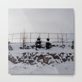 minnesota winter Metal Print