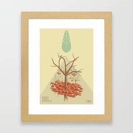 NP 003 Framed Art Print