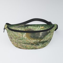 Little Duckie II - Colorful Fanny Pack