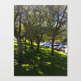 Carpark Trees Canvas Print