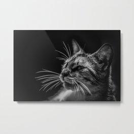 Cat by Lenin Estrada Metal Print