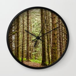 Old Growth Forest Photography Print Wall Clock