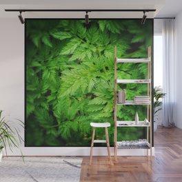 Leafy Greens DPSS170416b Wall Mural