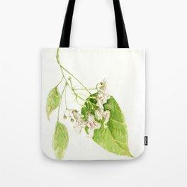 Catalpa Blossom 2017 Tote Bag