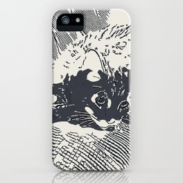 Lazy Cat on the Couch  iPhone Case