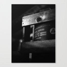 Better Safe Canvas Print